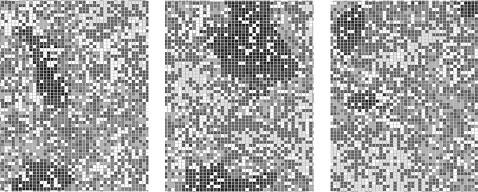ѕриклад динам≥ки модел≥ дл¤ багатовидового сусп≥льства